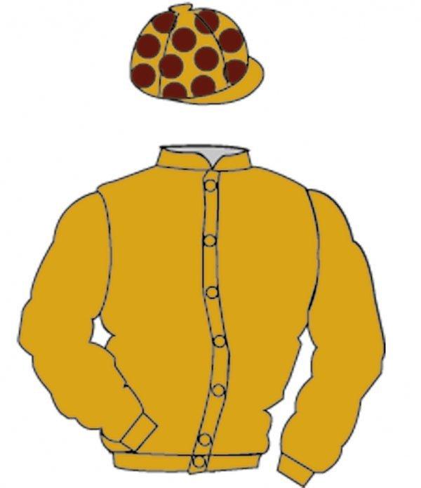 6: Distinctive Colours: ORANGE, BROWN spots on cap