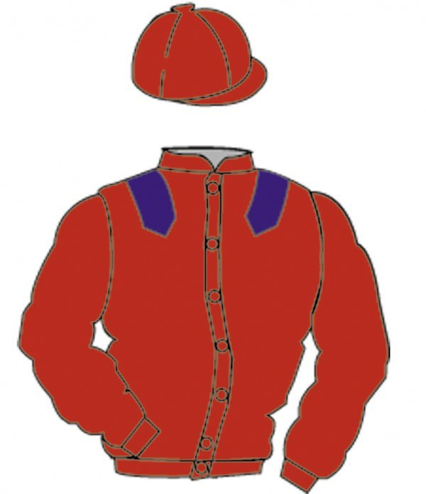 8: Distinctive Colours: RED, PURPLE epaulets