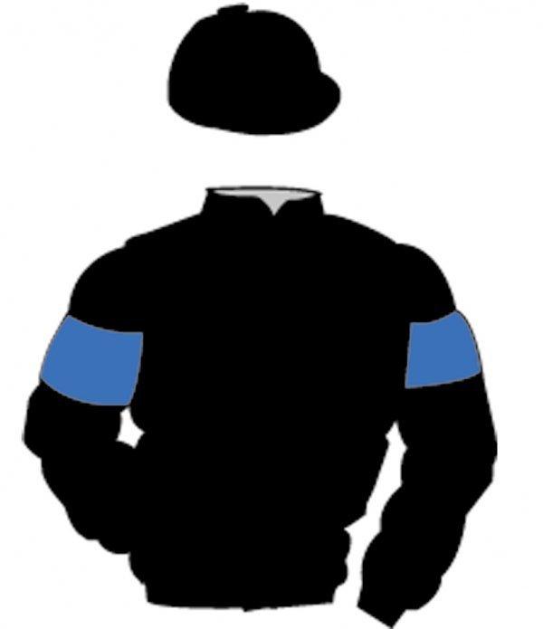 9: Distinctive Colours: BLACK, ROYAL BLUE armlets