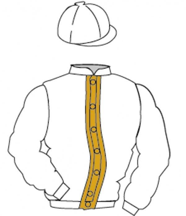 11: Distinctive Colours: WHITE, ORANGE stripe