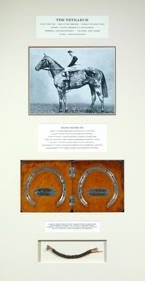 7: The Tetrarch: a framed display containing a pair of