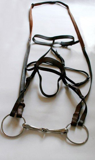 19: The Arkle Bridle, an authenticated bridle fixed wit
