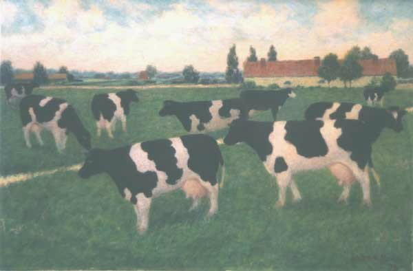 21: Painting COWS by Willem Boon