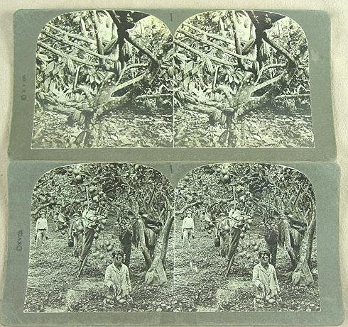317: STEREO CARDS RARE SALESMAN'S DEMOS