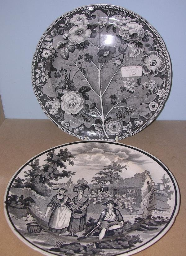 11: TWO SWANSEA TRANSFER DECORATED PLATES