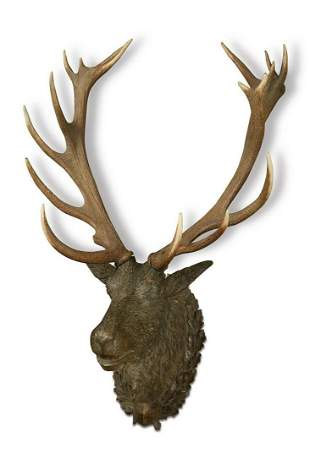 A 19th century Black Forest carved wood stag's head,