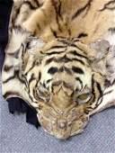 A Van Ingen Tiger skin,