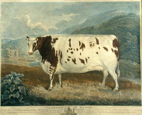 596: John Whessell after Fryer, stipple engraving