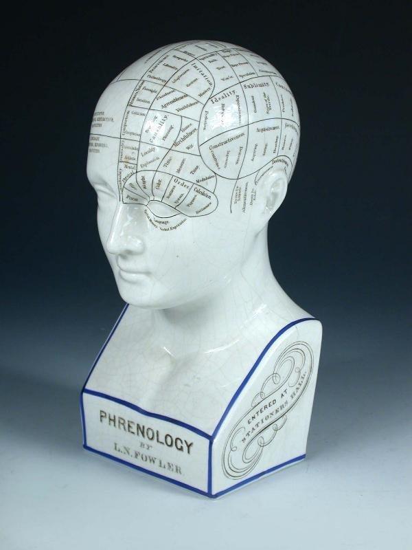 11: A VICTORIAN PHRENOLOGY HEAD