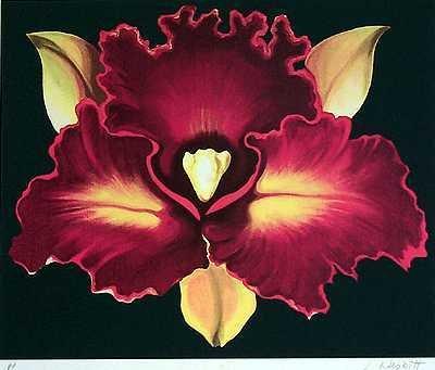 2632E: RED Lilly Modern Art Nesbitt RARE Sold Out Editi