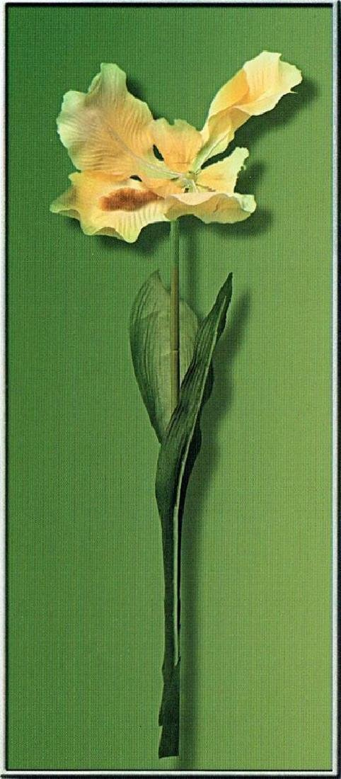 Bold Dramatic Large Single Floral Canvas Liquidation - 2