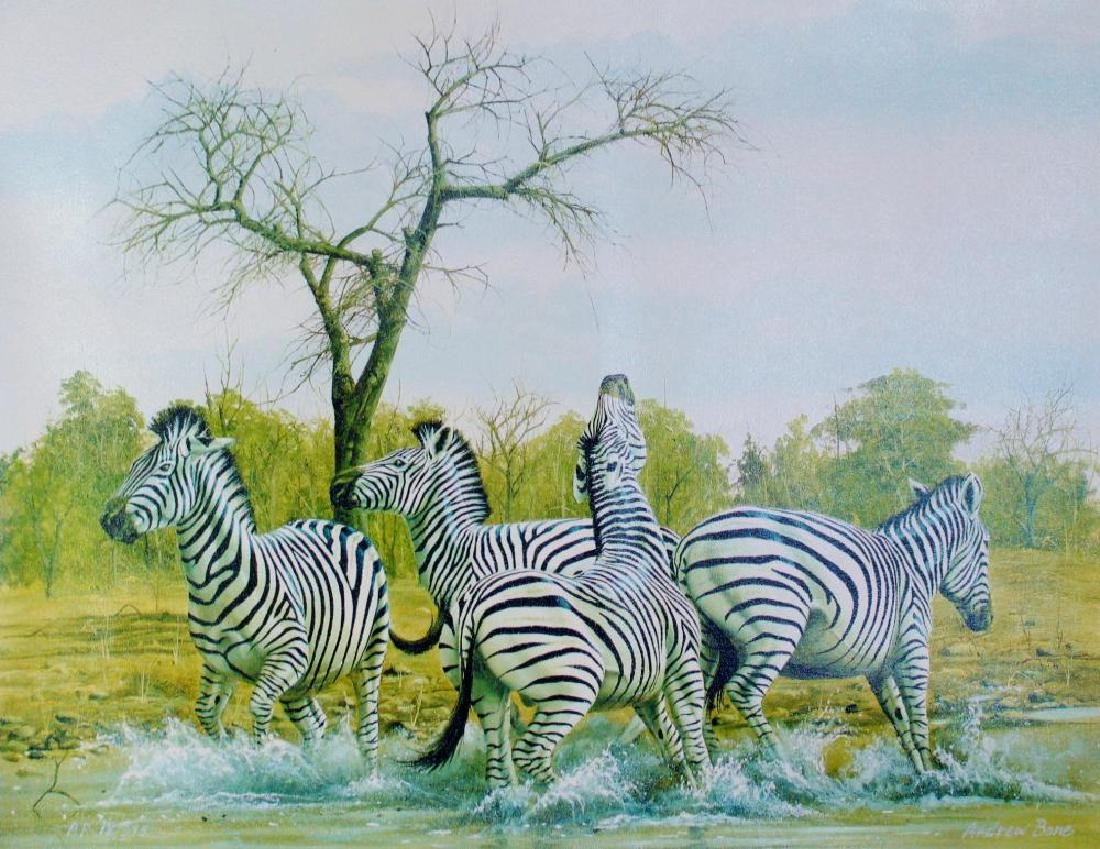 Zebra Signed Colorful Canvas Limited Ed Dealer Sale