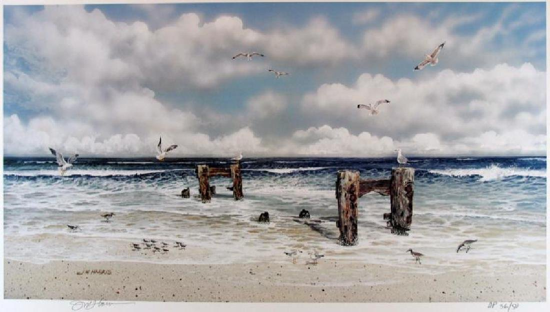 BEACH SCENE BIRDS RARE HARRIS LITHO SALE ONLY $50