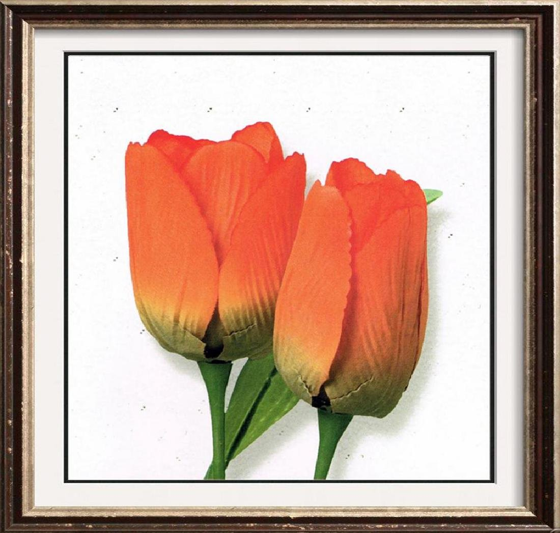 Orange Tulip Canvas Beautiful Modern Floral Giclee