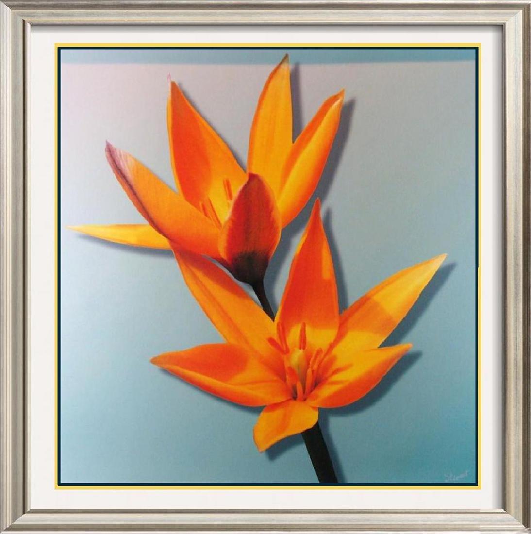 Canvas Giclee Fantastic Sale Colorful Best Art Deal