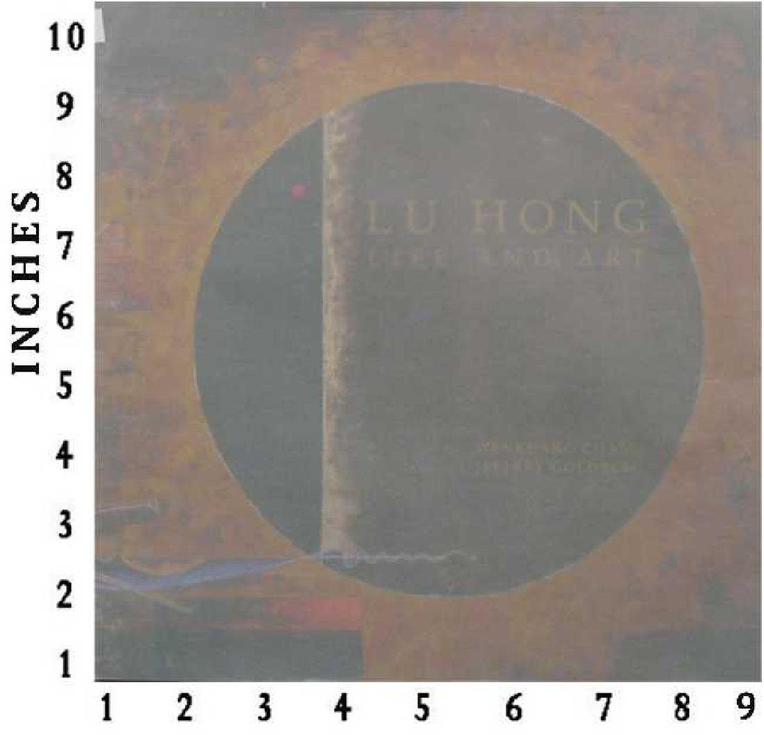Dealer Liquidating Art Books Lu Hong Life & Art 1989