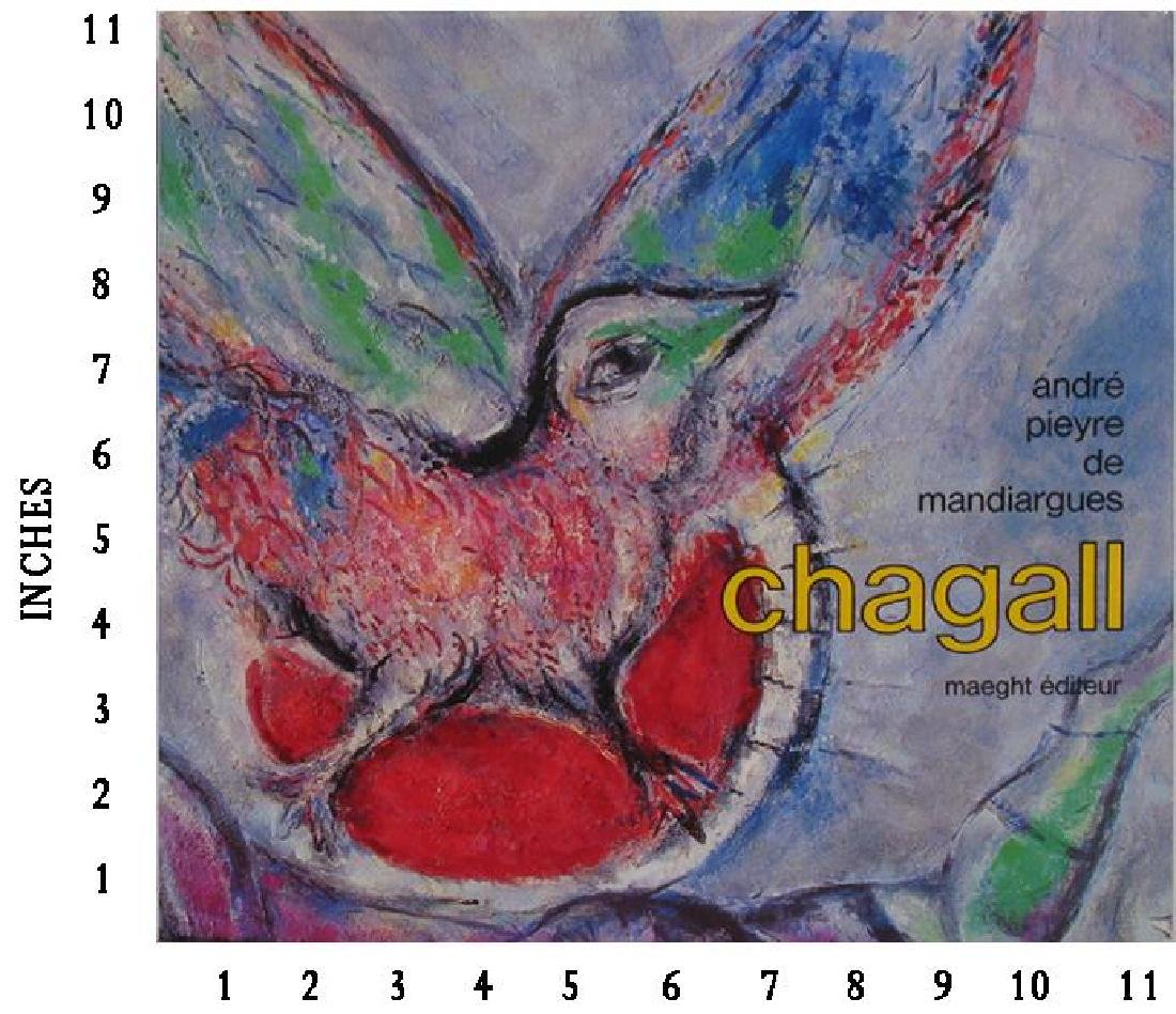 Museum Art Books Marc Chagall Andre Pieyre De