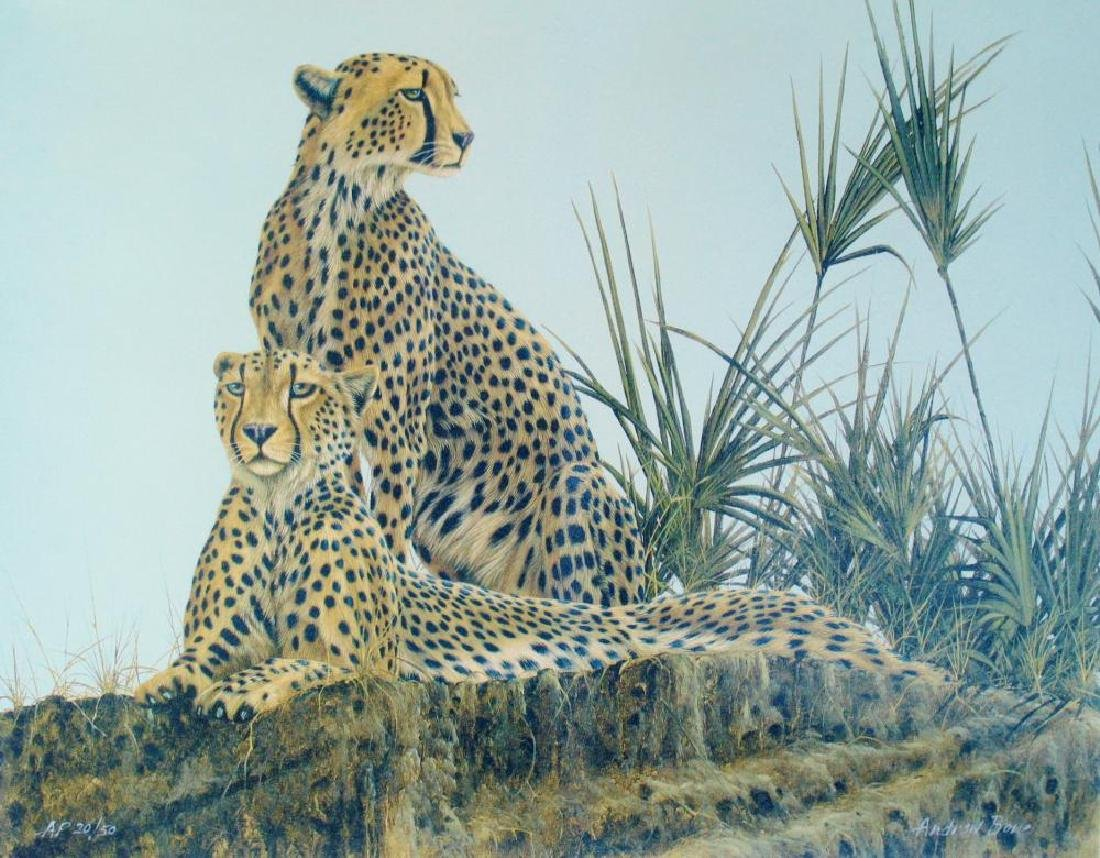 Wild Cheetahs Limited Edition Realism Canvas Signed