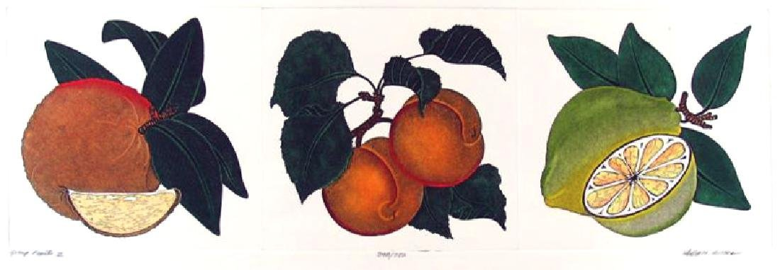 Fruit Mitra Hand Colored Etching Rare Sale