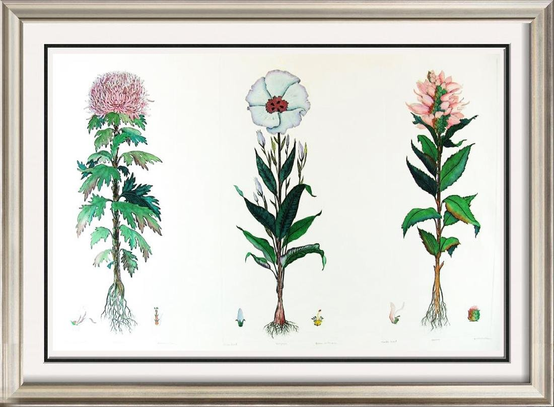 Colorful Etching Floral Hand Colored Ltd Ed