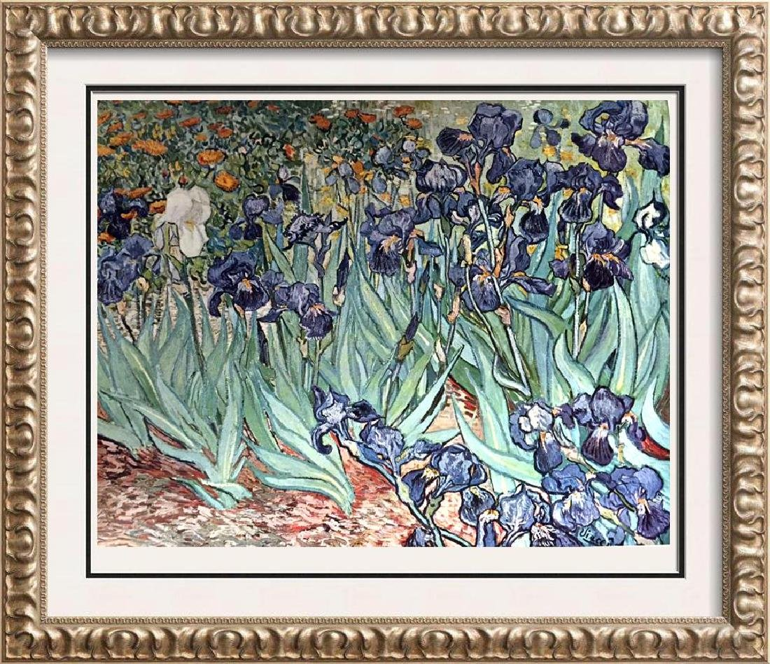 Vincent Van Gogh Irises c.1889 Fine Art Print Signed in