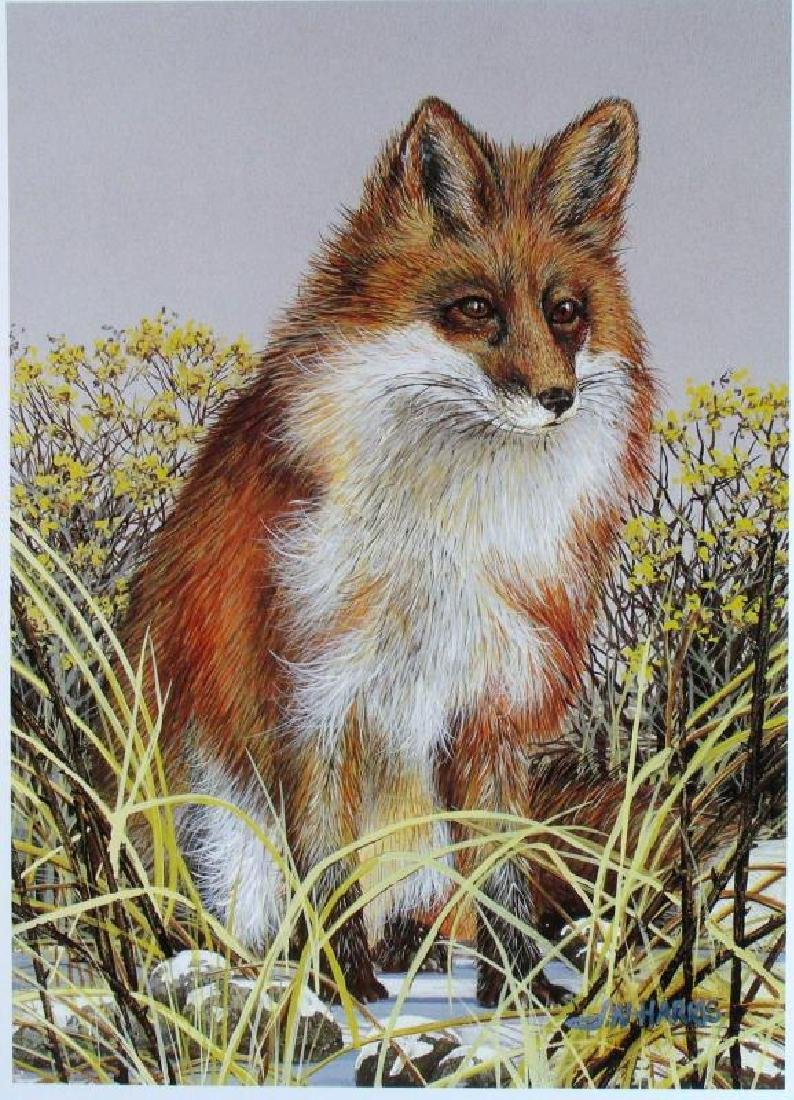 Harris Fox Plate Signed Lithograph Realistic Art