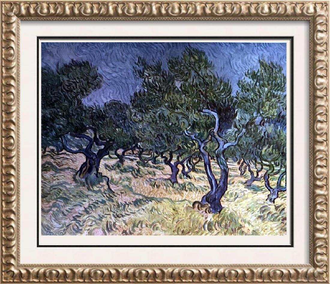 Vincent Van Gogh Olive Orchard c.1889 Fine Art Print