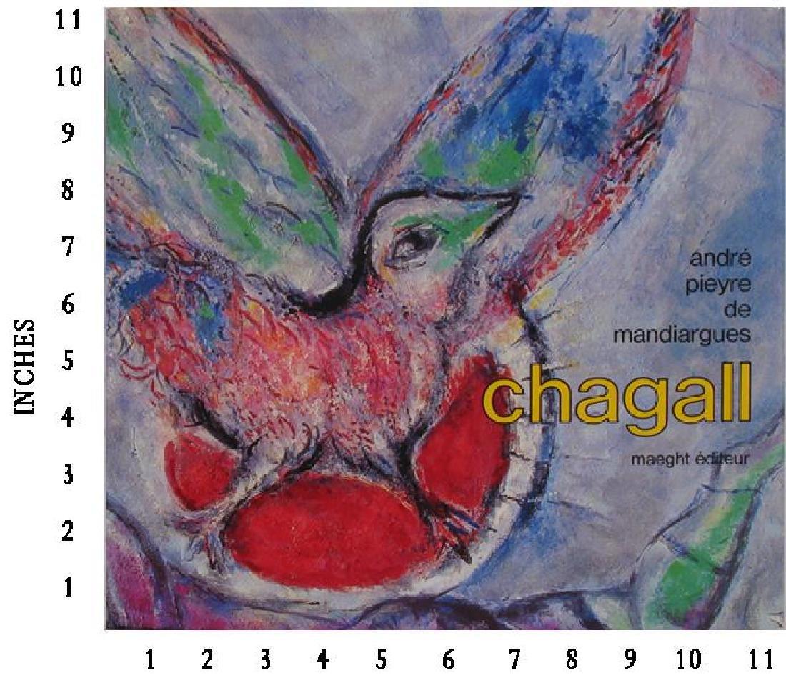 Museum Art Books Marc Chagall Andre Pieyre De