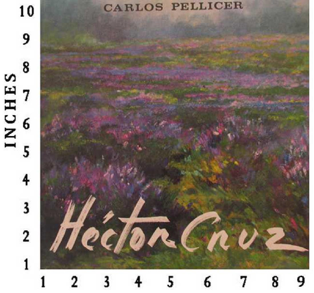 Dealer Liquidating Art Books Hector Cruz 1975  Good