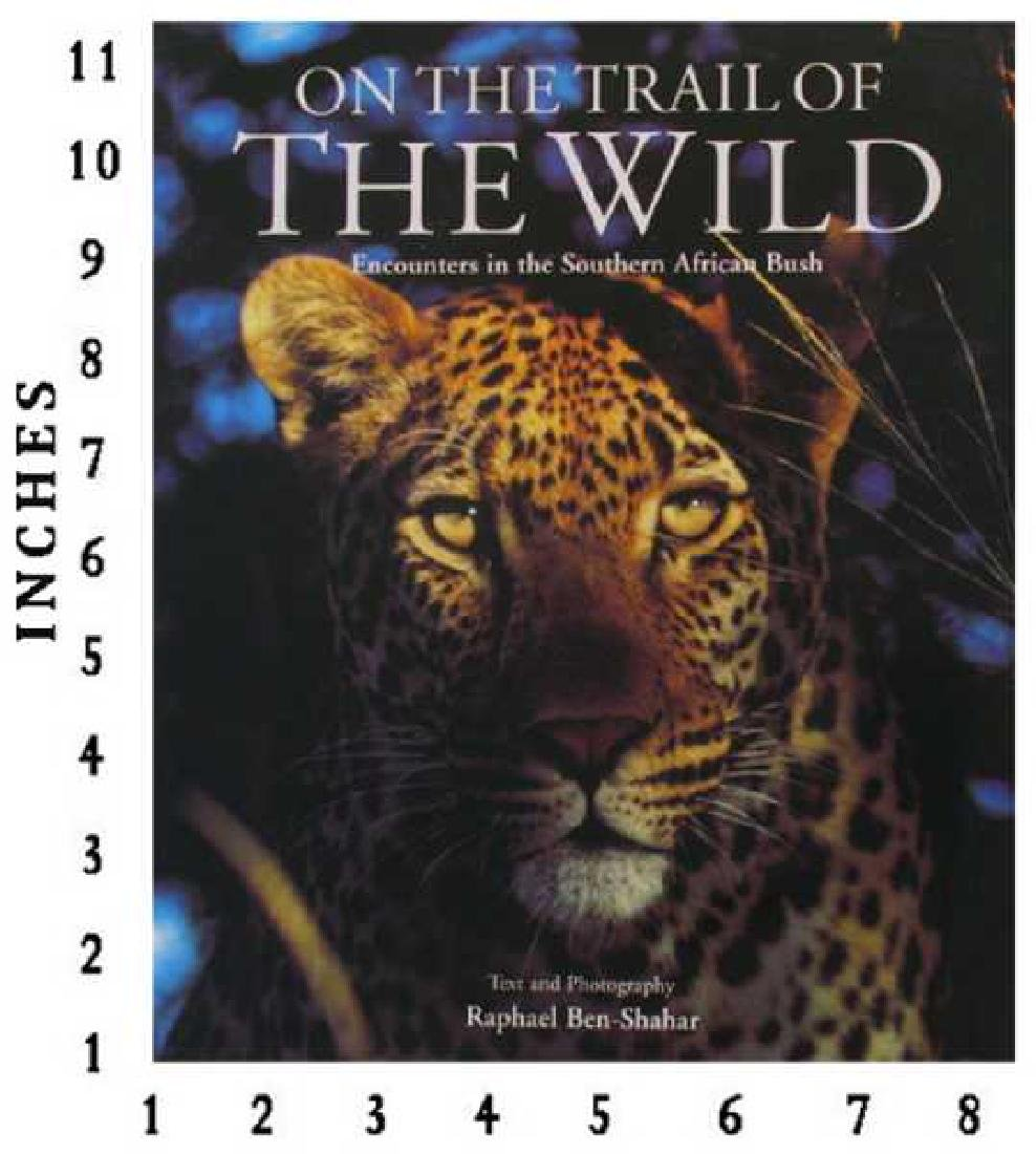 Museum Art Books On The Trail Of The Wild, Encounters