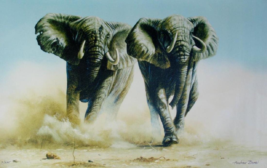 Elephant Stampede Andrew Bone Ltd Ed Canvas Sale