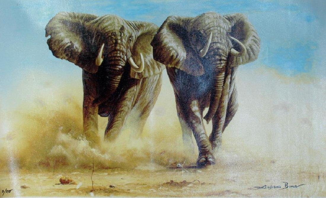 Elephant Stampede Andrew Bone Ltd Ed Canvas Sale