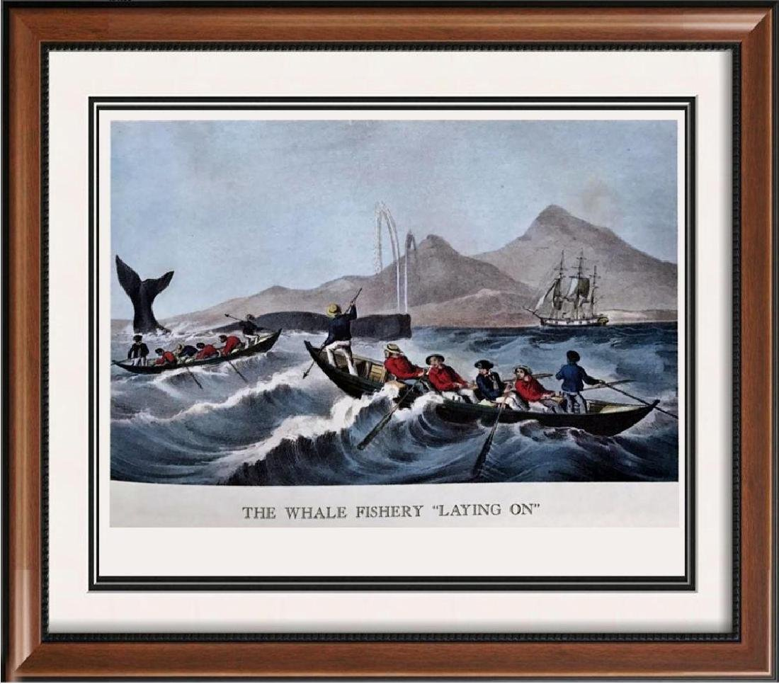 The Whale Fishery Laying On Color Lithographic Fine Art