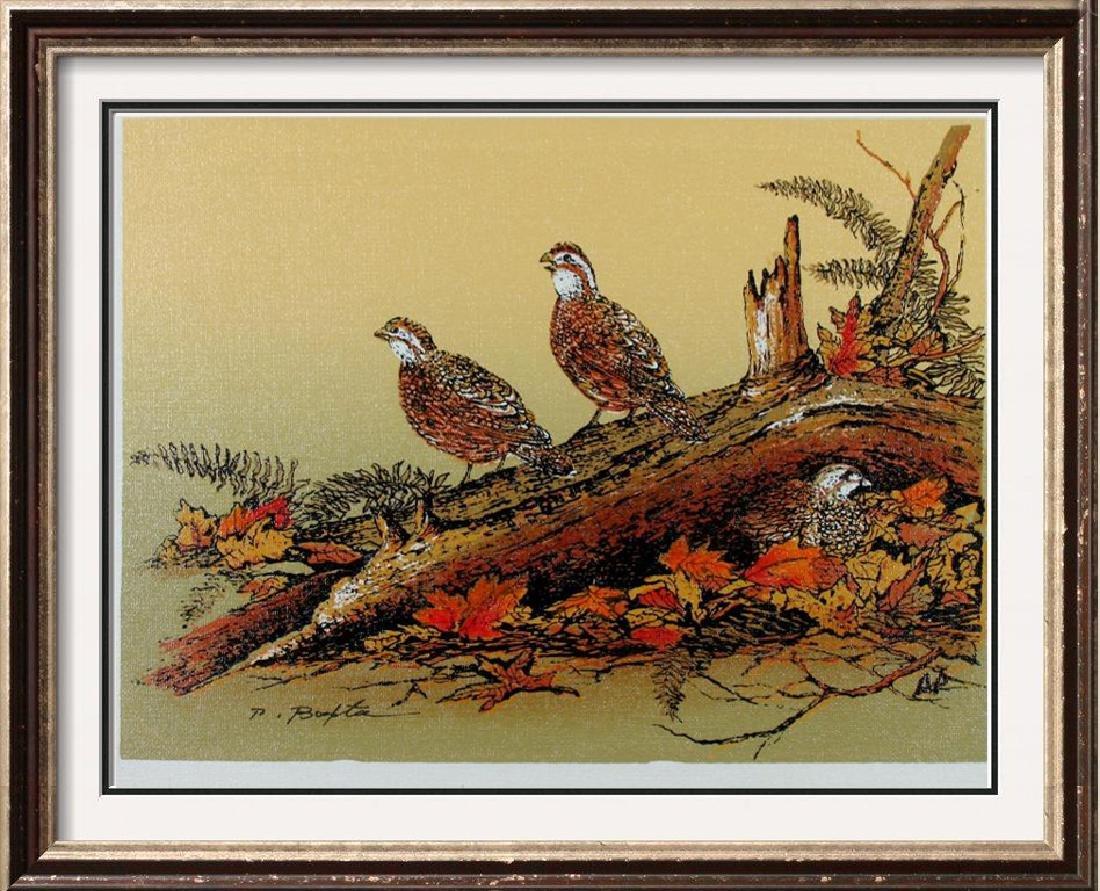 Birds Perched  A/P Ltd Ed Canvas Only $20 Dealer Sale