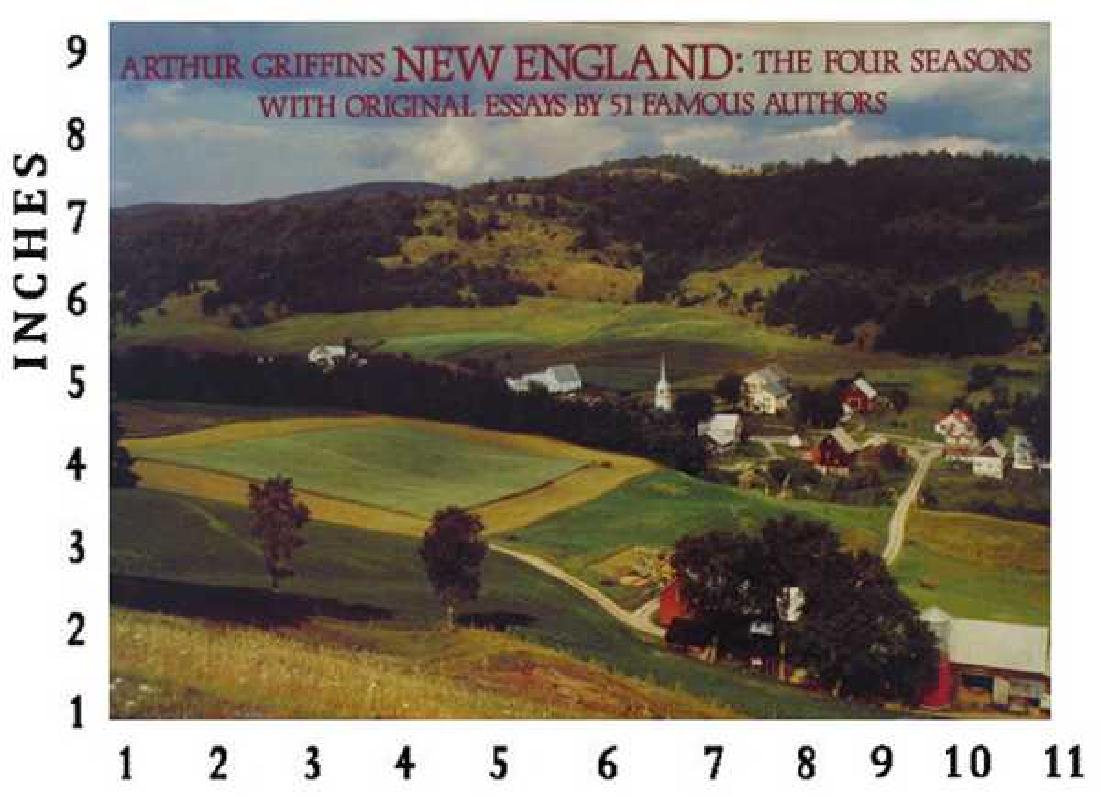 Dealer Liquidating Art Books Arthur Griffin New England