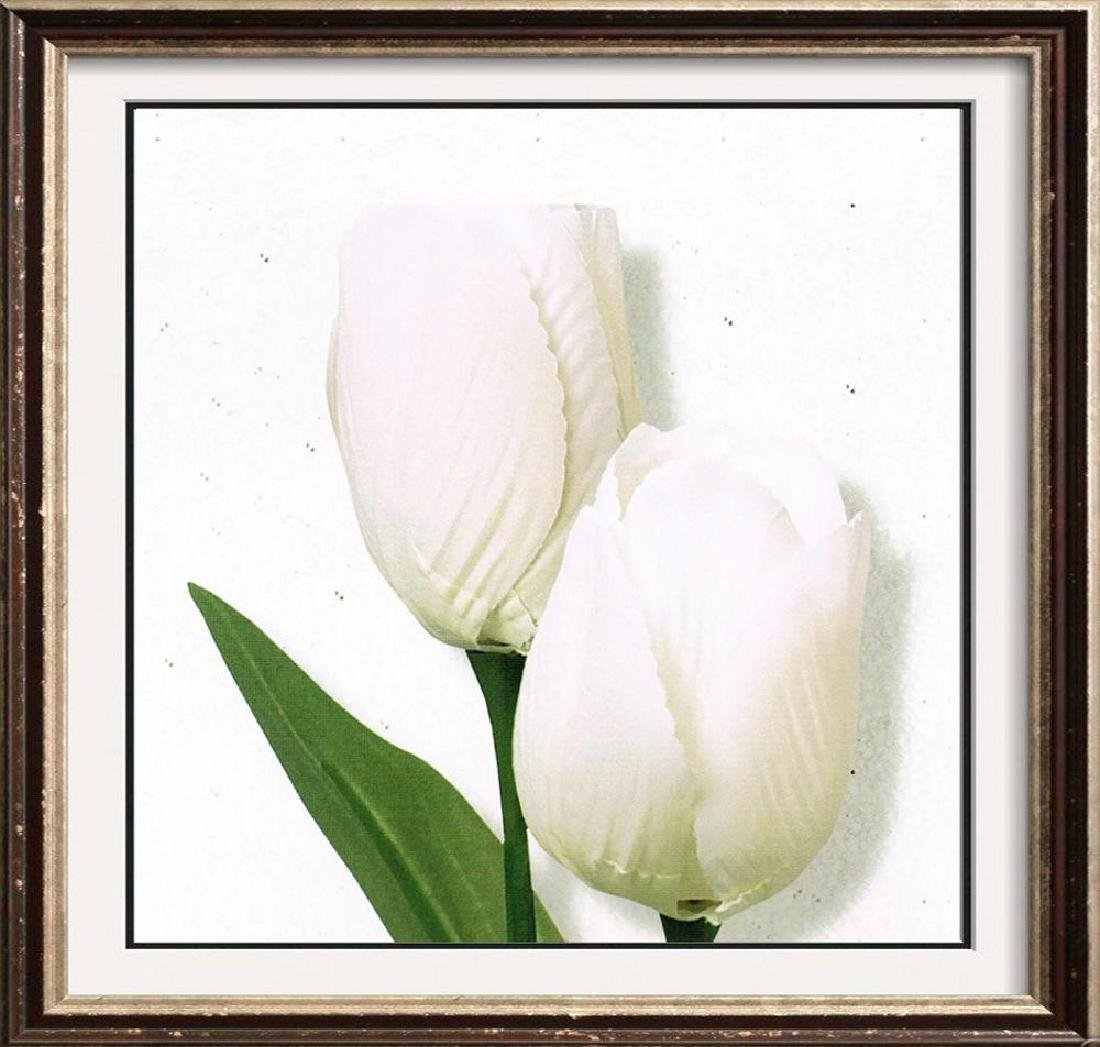 White Tulip Canvas Beautiful Modern Floral Giclee