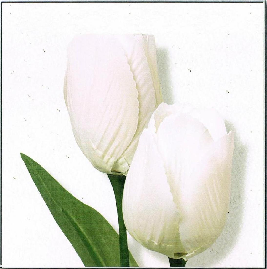 White Tulip Canvas Beautiful Modern Floral Giclee - 2
