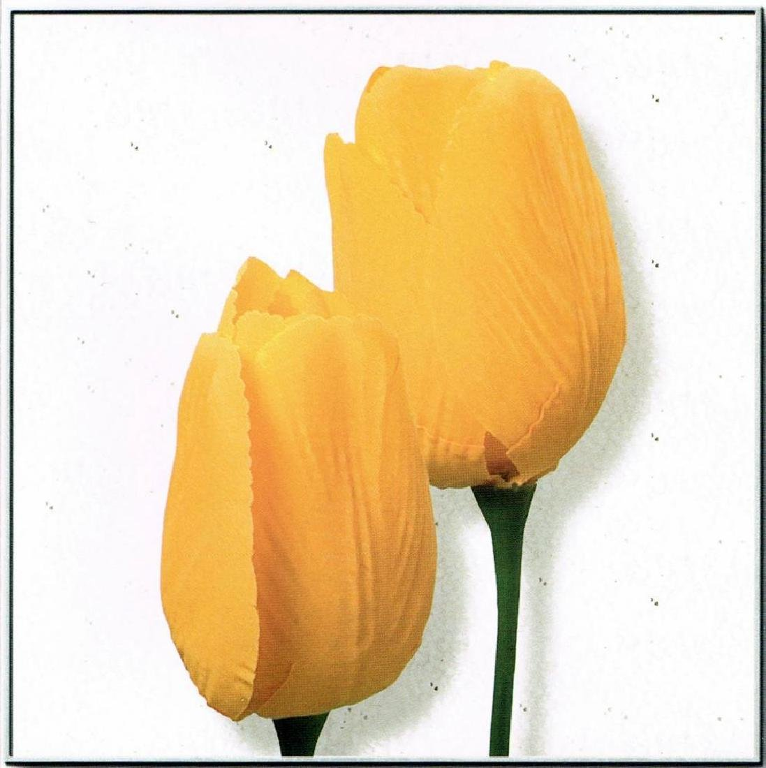 Yellow Tulip Canvas Beautiful Modern Floral Giclee - 2