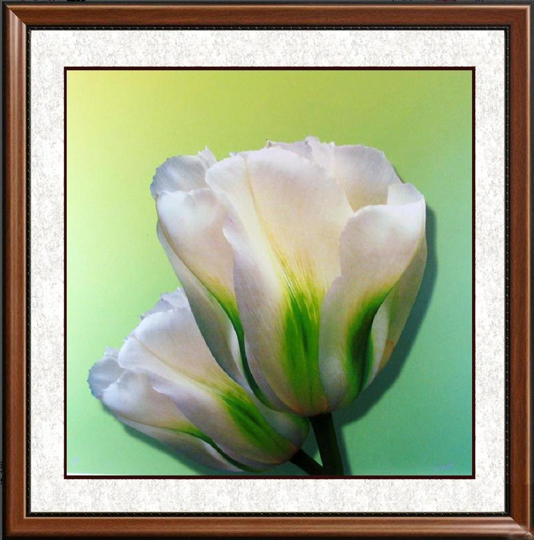 Bloom Canvas Dramatic Modern Giclee Great Value