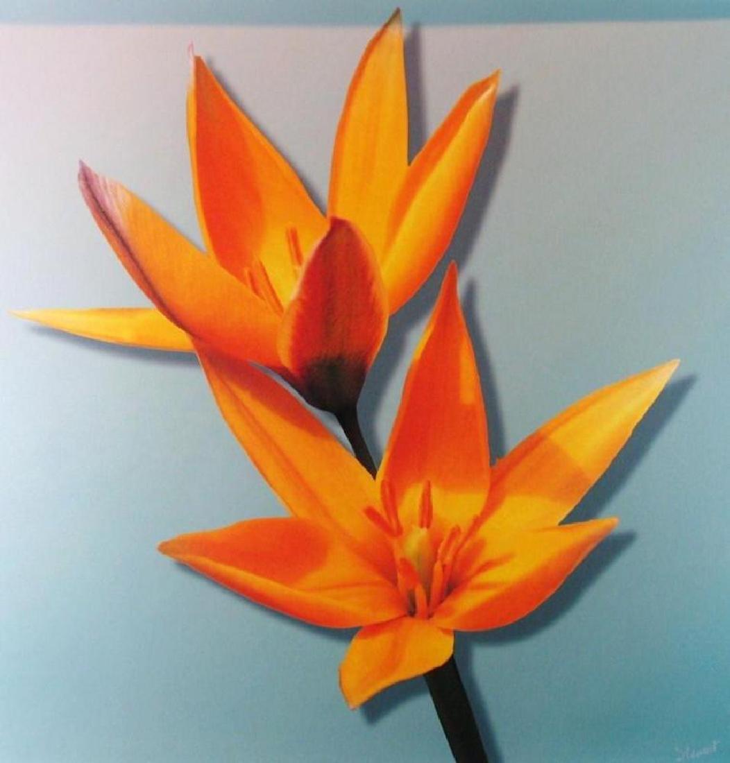 Canvas Giclee Fantastic Sale Colorful Best Art Deal - 2