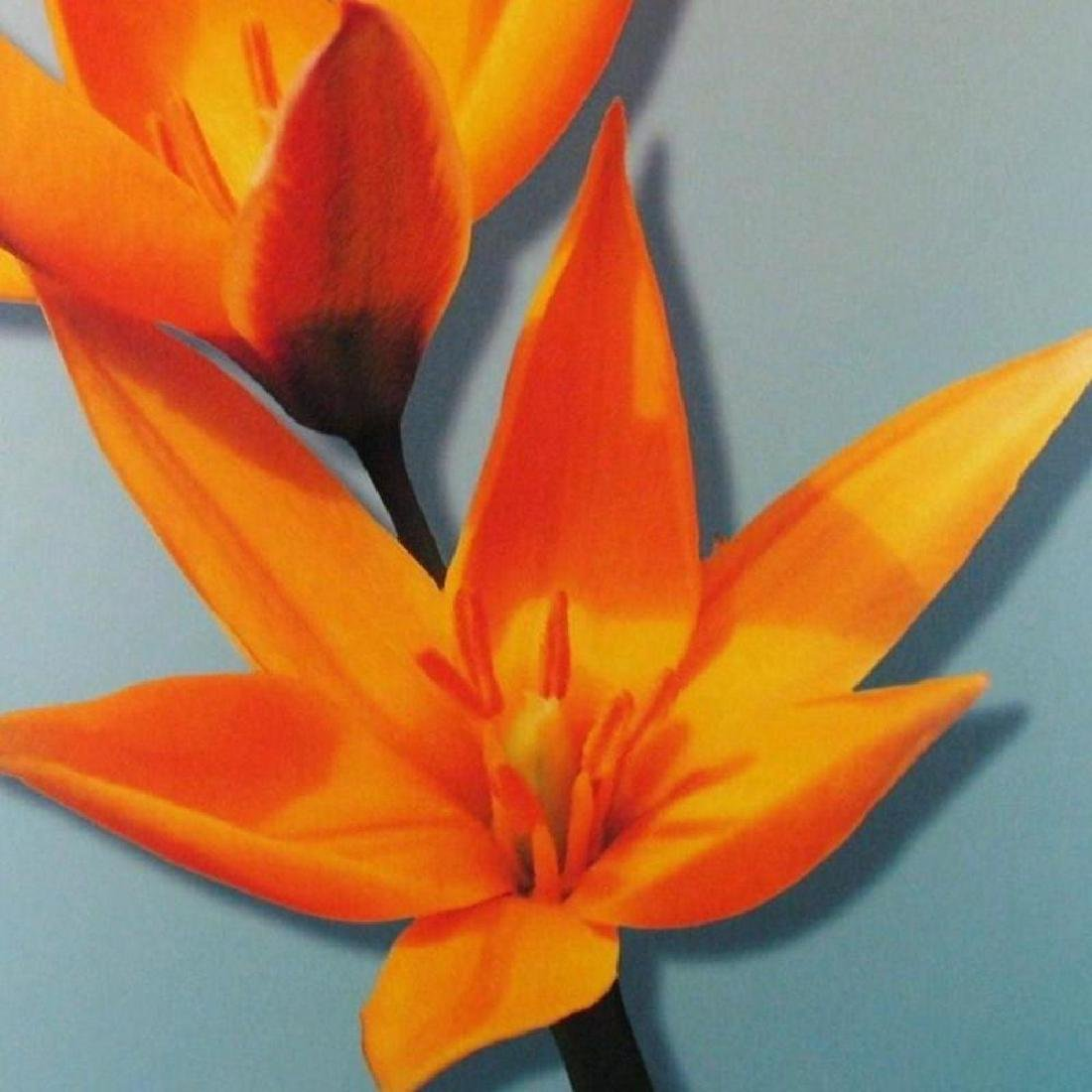Canvas Giclee Fantastic Sale Colorful Best Art Deal - 3
