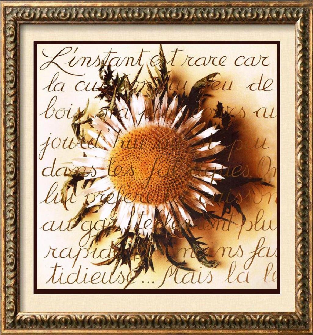 Sunflower With Writing Canvas Giclee Below W/Sale