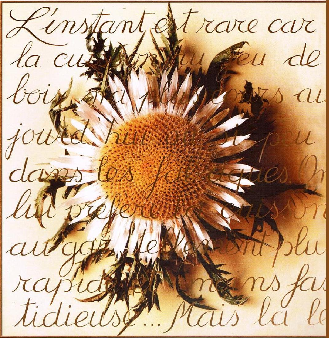 Sunflower With Writing Canvas Giclee Below W/Sale - 2