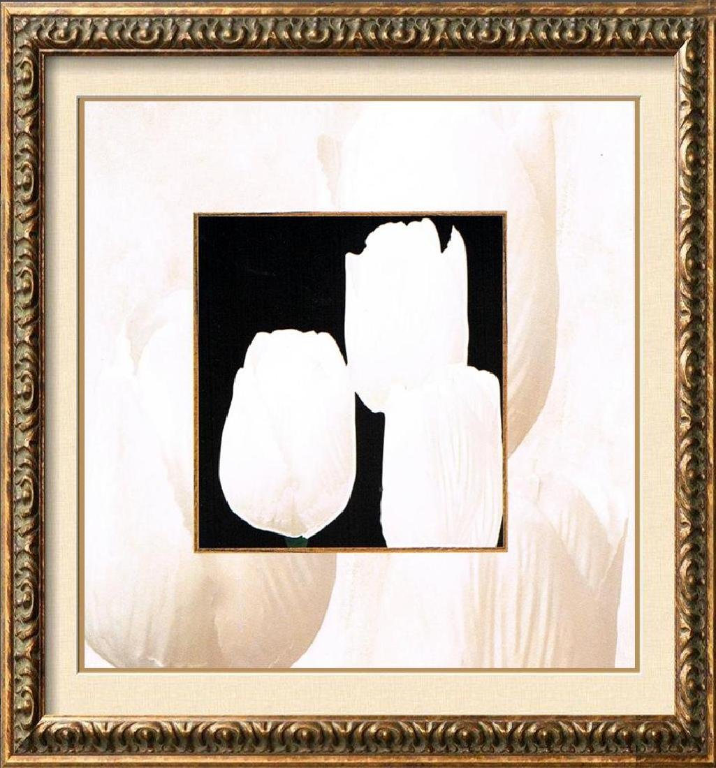 Tulips Black & White Giclee Canvas Art Liquidation