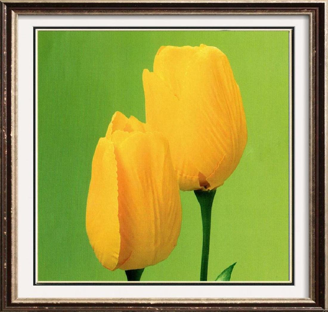 Yellow Tulips On Green Canvas Giclee Dealer Sale