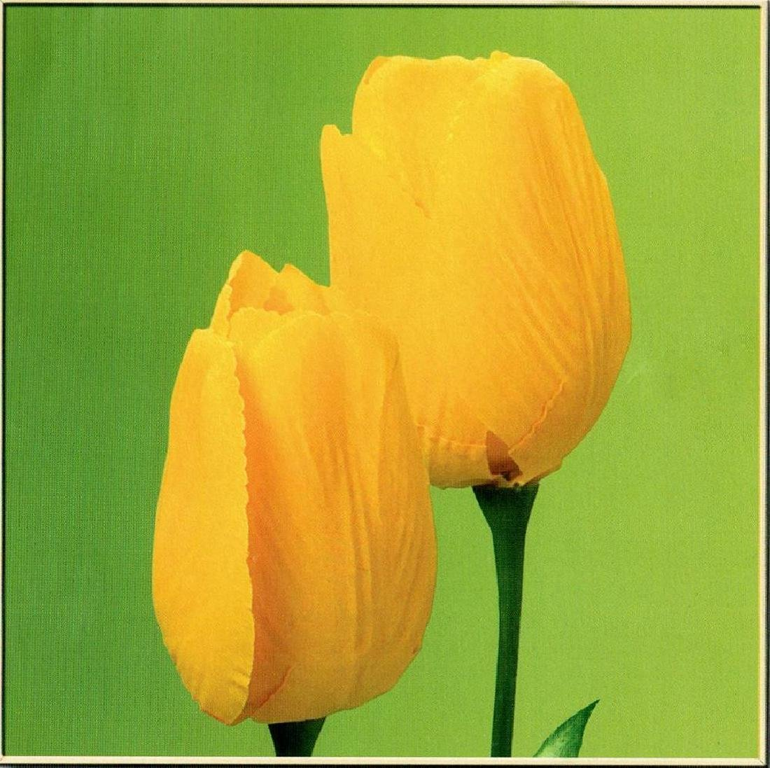 Yellow Tulips On Green Canvas Giclee Dealer Sale - 2
