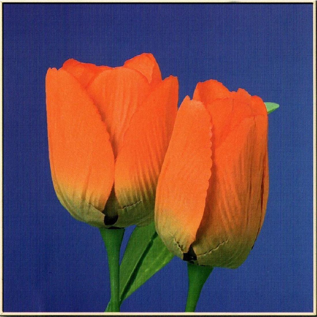 Modern Art Purple Orange Tulip Canvas Floral Sale - 2