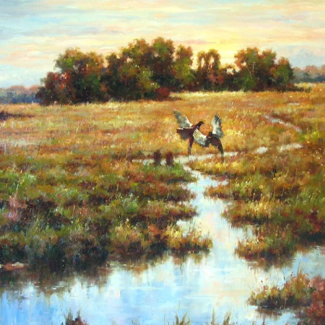Everglades Wildlife Birds Landscape Low Country - 2