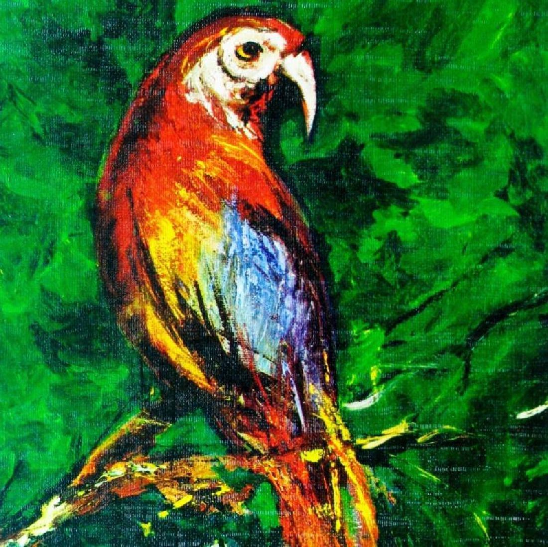 Parrott Lithograph Signed Colorful Art For Sale - 2