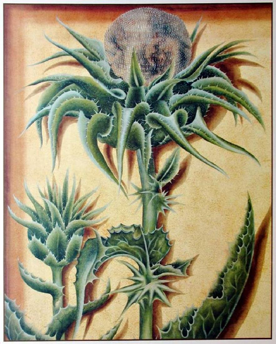 Cactus Sung 1998 Litho On Arches Printed In Canada